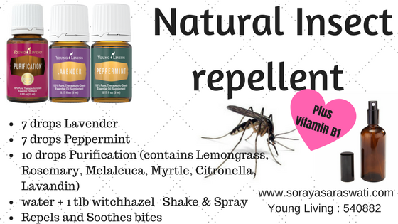 Natural-Insect-repellant